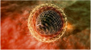 Гепатит С: опровергаем мифы о заболевании
